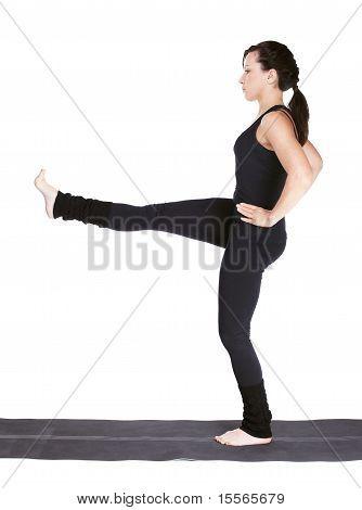 Yoga berufsständige Utthita Parsva Sahitya