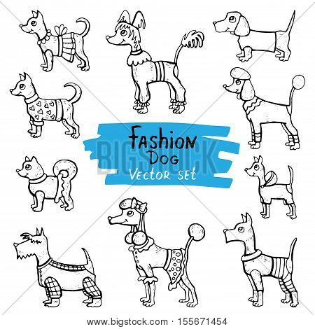 Vector set with hand drawn isolated doodles of dogs. Flat illustrations on the theme of fashion clothes for dogs. Sketches for use in design, web site, packing, textile, fabric