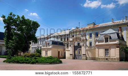 Architectural landmark - Potocki Palace in Lvov Ukraine. Built 1880. Currently - Lvov National art gallery