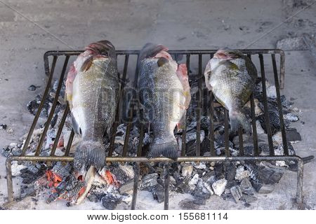 Sea Bass Grilled The Traditional Dalmatian Way On Steel Grill Bars On Wood