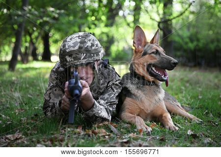 Soldier with military working dog is taking aim in forest