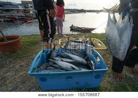 Labuan,Malaysia-Nov 9,2016:Fisherman selling fresh fish at Labuan island on 9th Nov 2016.The waters off the coast of Labuan islands are rich fishing grounds.