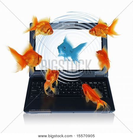 Goldfish and laptop. Collage.