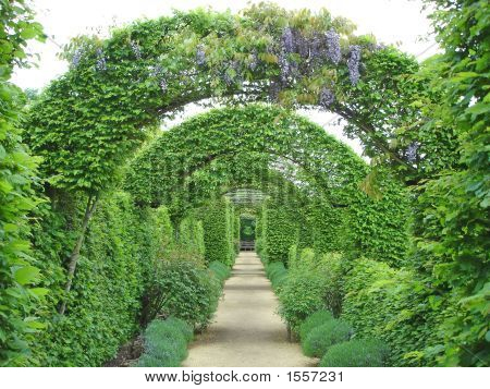 Garden Path Under Flowers Arches, Prieure Notre Dame D Orsan, France