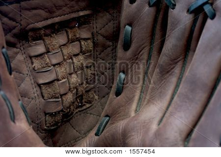 Baseball / Softball Glove