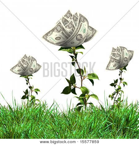 Bush of dollar bills on the green grass against the blue sky. Concept.
