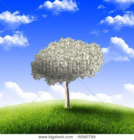 Tree of dollar bills on the green grass against the blue sky. Concept.