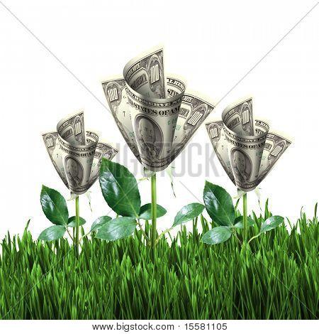 Bush de billetes de un dólar sobre la verde hierba contra el cielo azul. Concepto.