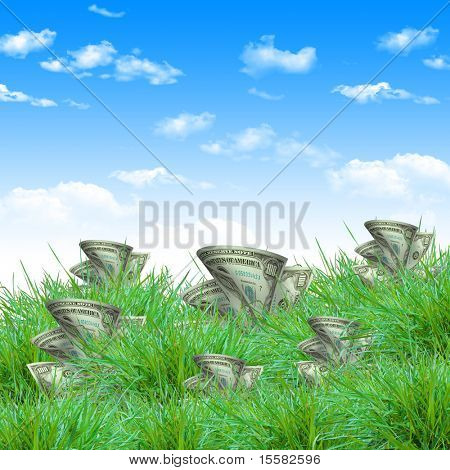 The vegetation of dollar bills on the green grass against the blue sky. Concept.