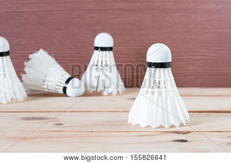 The Badminton White Shuttlecock On Nature Wooden Background