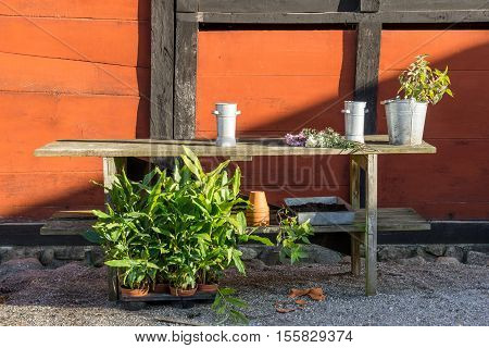 romantic idyllic plant table in the garden with old retro flower pot pots garden tools and plants. Rustic table with flower pots potting soil trowel and plants