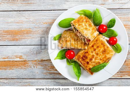 Fried Flatbread Wraps Stuffed With Meat On White Dish