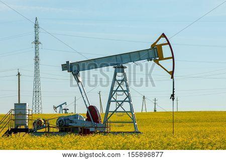 rocking oil rapeseed field rocking oil. Oil pumps. Oil industry equipment. winter landscape. winter landscape oil pump near coniferous forest in sunny cold day