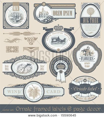 Vector set of vintage framed ornate labels & page decor design element