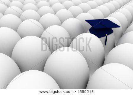 Horda de ovos com 1 ovo graduado