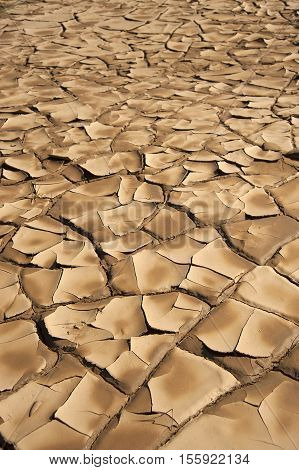 a close up of brown dryness and arid ground