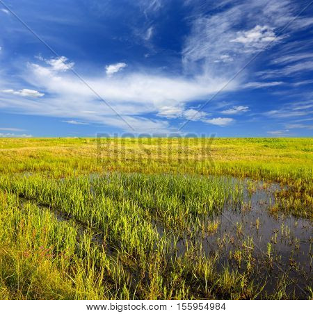 nice landscape with wet meadow under blue sky with clouds