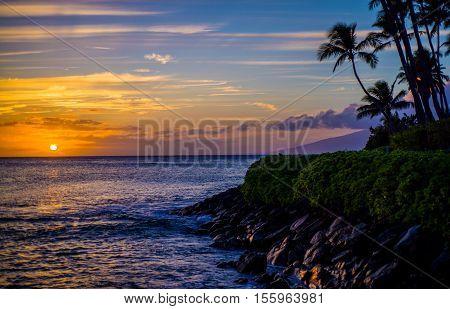 coconut palms above a rocky lava shoreline at sunset napili bay maui hawaii.