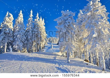Beautiful landscape with the most famous ski slope in Europe. Poiana Brasov, Romania, in winter season
