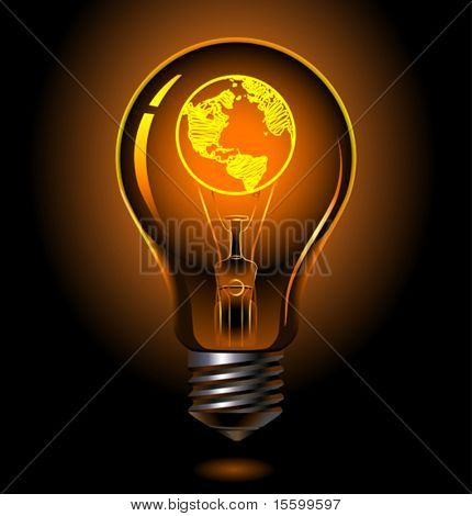vector bulb with earth inside (america)