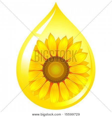 Vektor Sonnenblumenöl drop