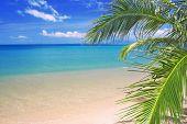 Постер, плакат: красивый тропический пляж и море