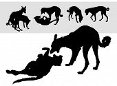 stock photo of kamasutra  - Collection of vector silhouettes dog - JPG