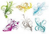 picture of scroll design  - Branches vector design elements - JPG