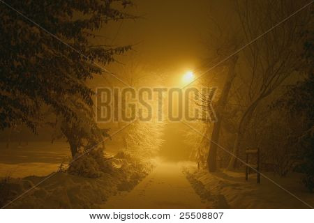 Misterious snowy path