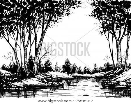 Lago da floresta de bétula