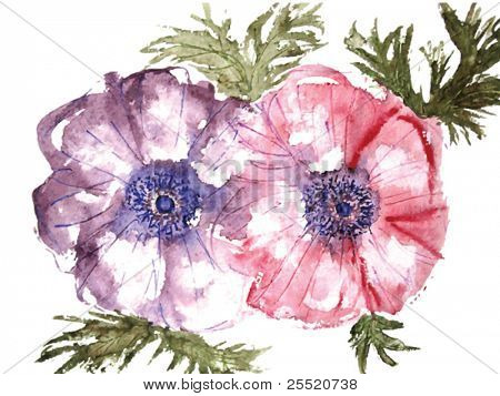Watercolor flowers, VECTOR