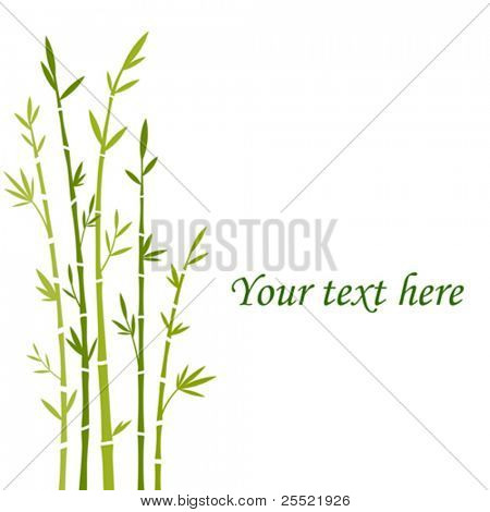 Colored vector illustration of bamboo trees