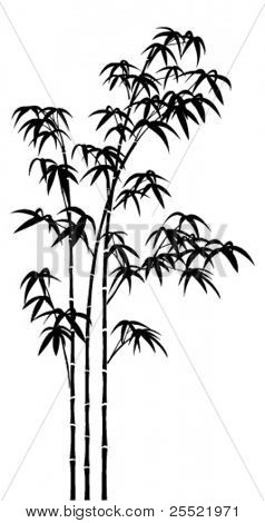 Vector silhouette of bamboo trees