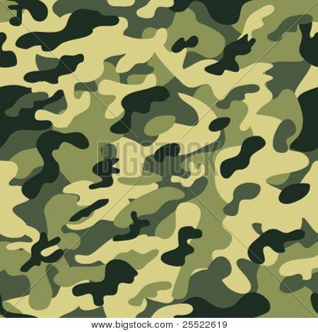 Padrão de camuflagem perfeita
