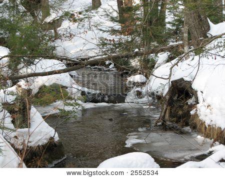 Winter Brook