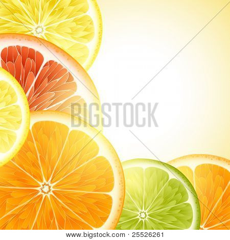 Vector background for design with fruits of an orange, a lemon, grapefruit and Lima