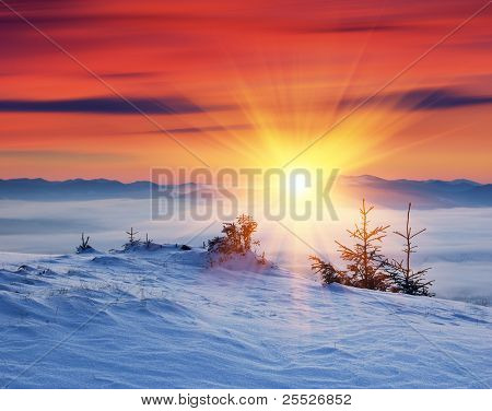 Winter landscape on a sunset. Mountains Carpathians, Ukraine