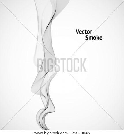 Vektor Rauch