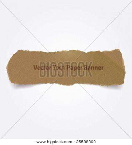 Bandeira de papel rasgado de vetor