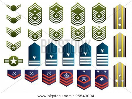 Military insignia isolated. Vector illustration.