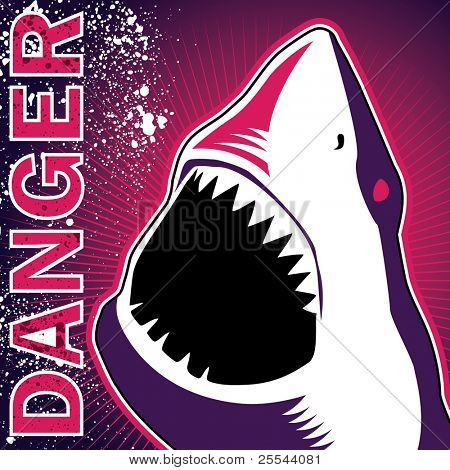 Designed banner with dangerous shark. Vector illustration.