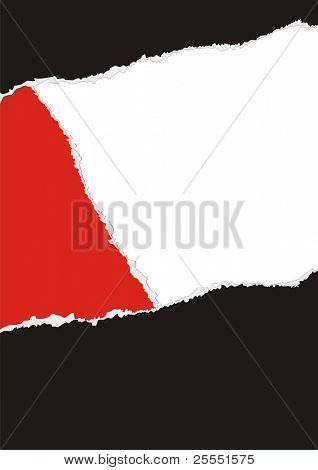 Vector illustration abstract background with pieces of a torn colored paper.