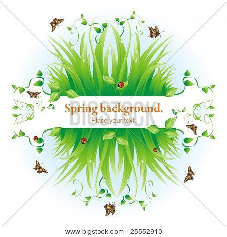 Spring background. Vector composition with a grass, leaves, dew, butterflies and a ladybird.