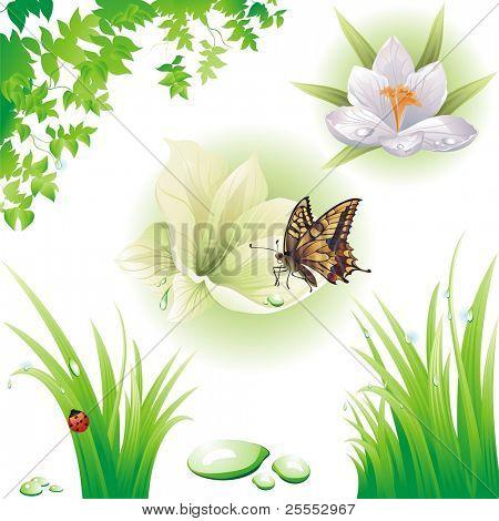 Collection of green design elements. Vector illustration.