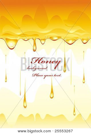 Honey background. (vector illustration)