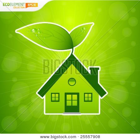 Green house with leafs and bokeh