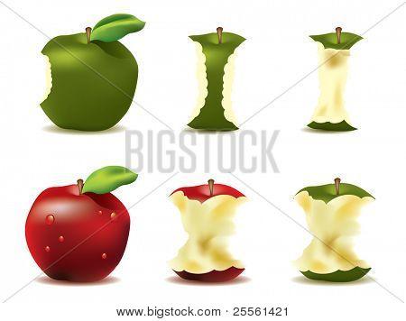 köstlichen frischen Apfel Vektor