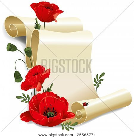 Roll of old paper and poppies. Vector illustration, isolated on white background.