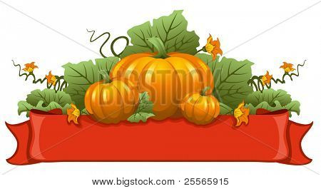 Vector illustration of ripe october pumpkin