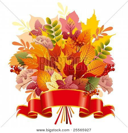 bouquet of autumn leaves, vector editable illustration